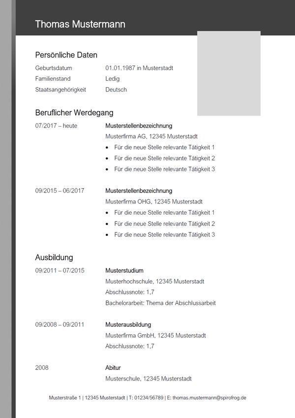 Vorlage / Muster: CV-Layout 17