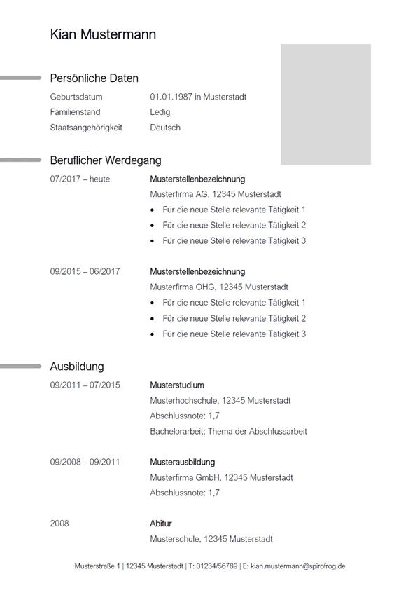 Vorlage / Muster: CV-Vorlage 10
