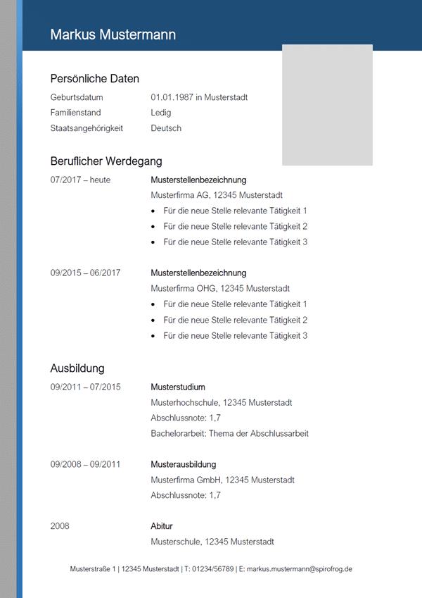 Vorlage / Muster: Lebenslauf-Muster 11