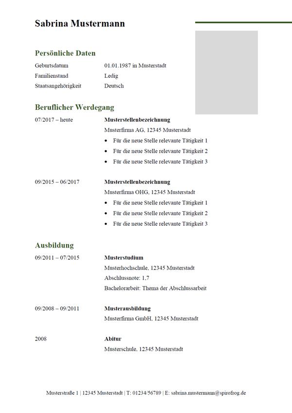 Vorlage / Muster: Lebenslauf schlicht 15
