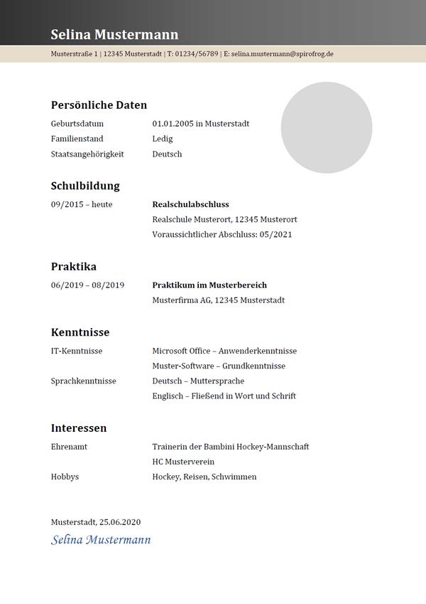 Vorlage / Muster: Lebenslauf 24