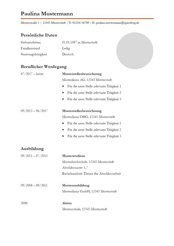 Vorlage / Muster: Lebenslauf 29